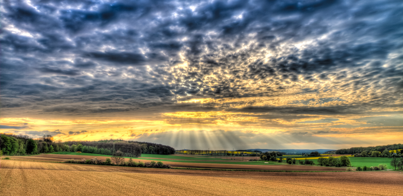 nearly sunset (hdr)