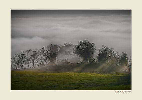 Nebbia e luce (10)