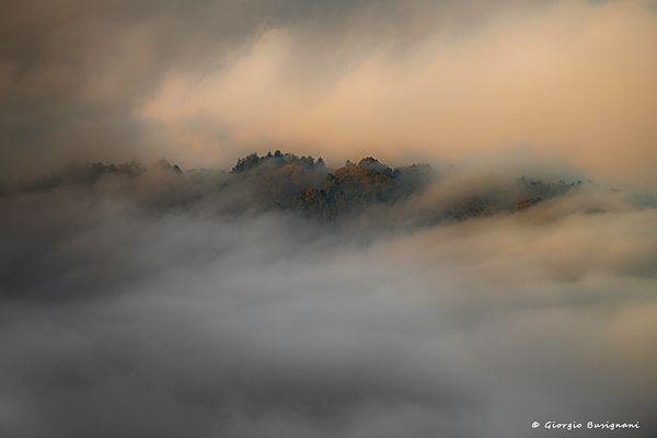 Nebbia e luce (12)