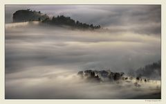 Nebbia e luce (7)