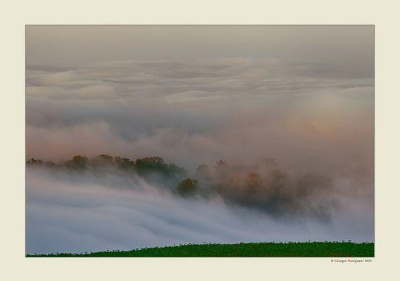 Nebbia e luce (9)