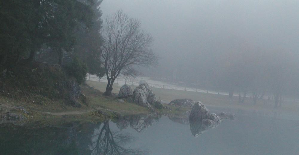 Nebbia sul lago di Fusine