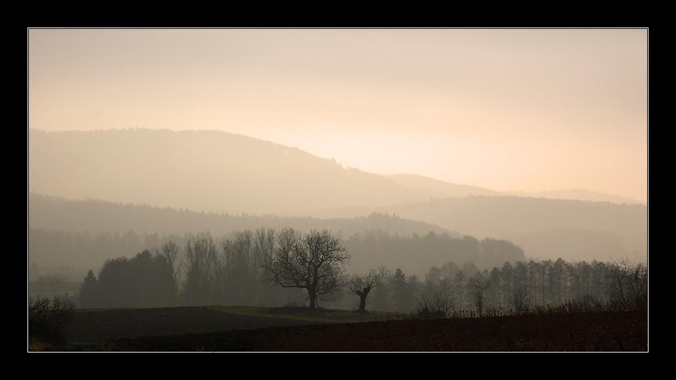 ~ Nebel ~
