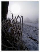 nebel - 1