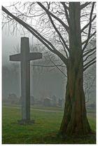 Nebel 2 (auf dem Friedhof)