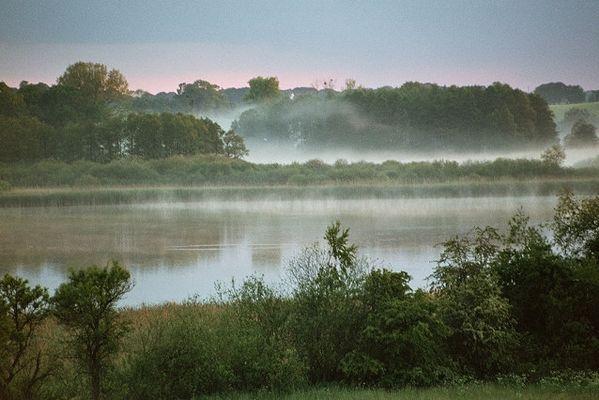 nebel (3) - ansichten