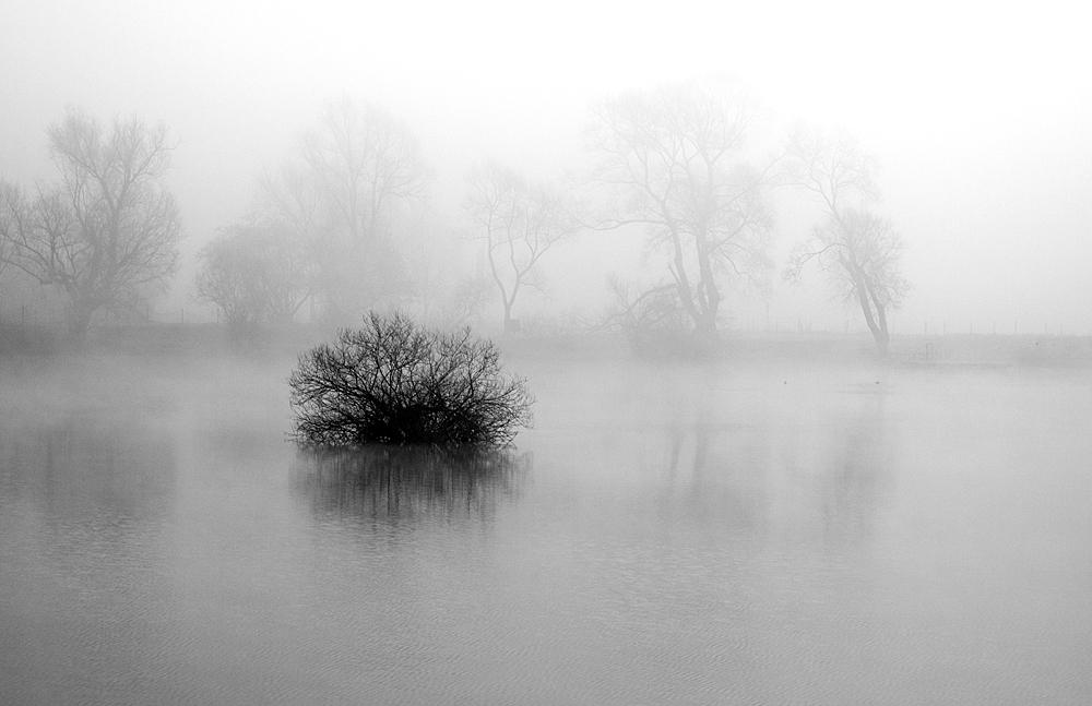 Nebel von Christa Petz-Mette