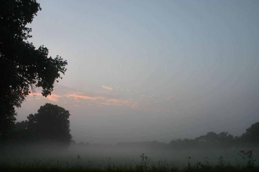 Nebel am Abend