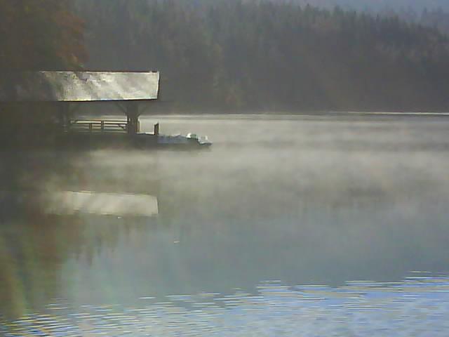 Nebel am Alpsee
