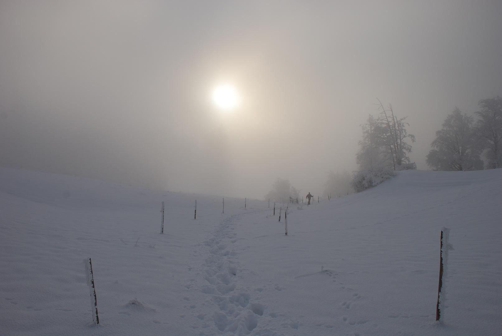 Nebel am Auerberg Teil 5*