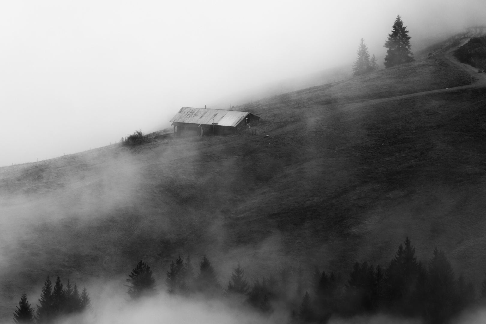 Nebel am Berg 1 ( SW )