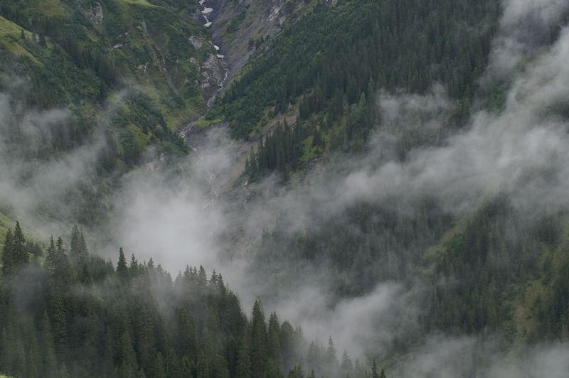 Nebel am Berg