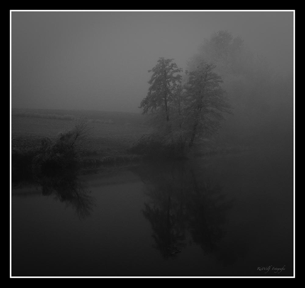 Nebel am Fischteich