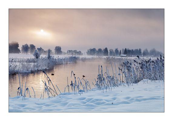 nebel am fluss