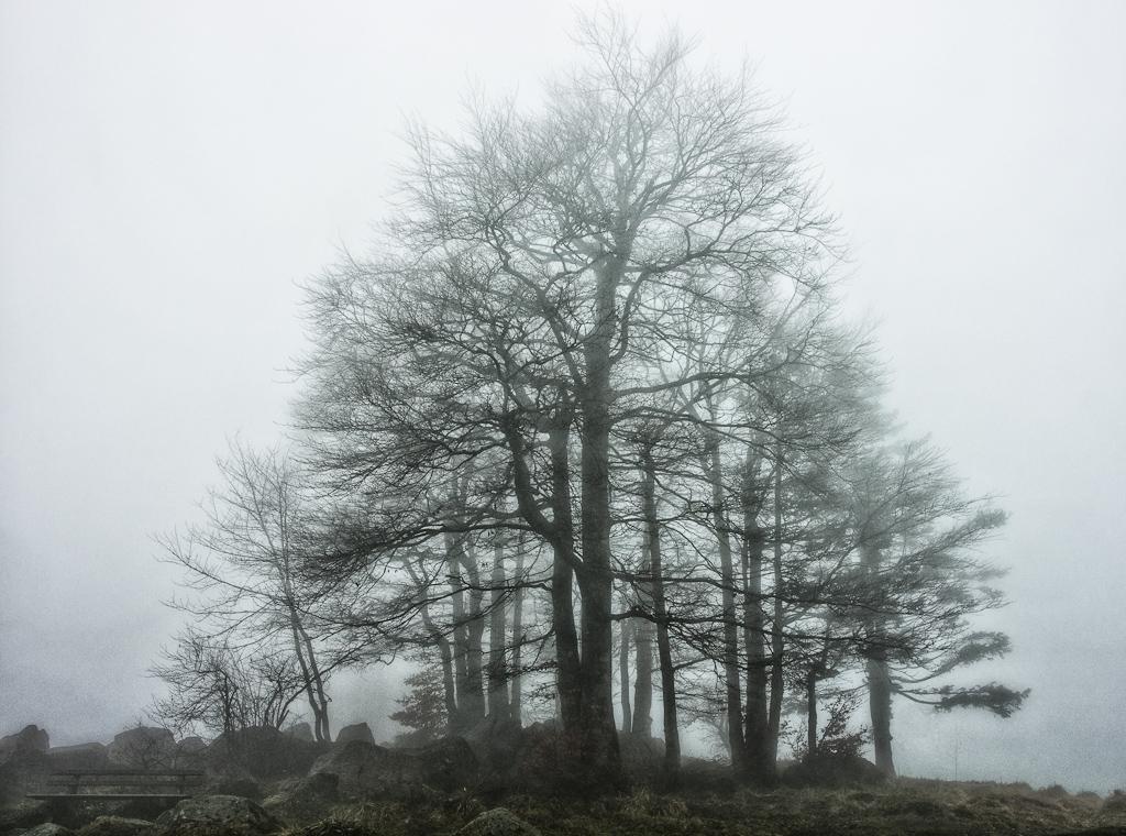 Nebel am Hochblauen