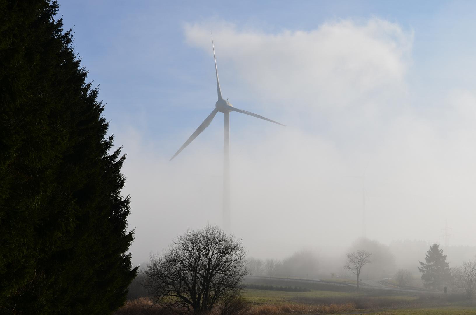 Nebel am Nachmittag