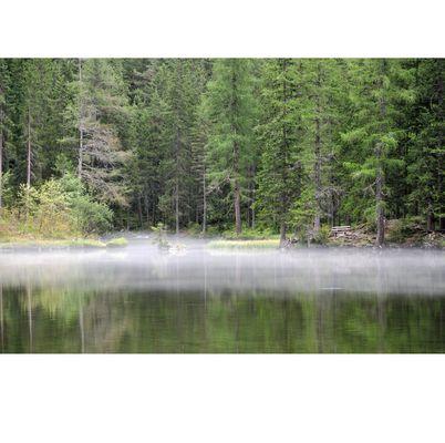 Nebel am See