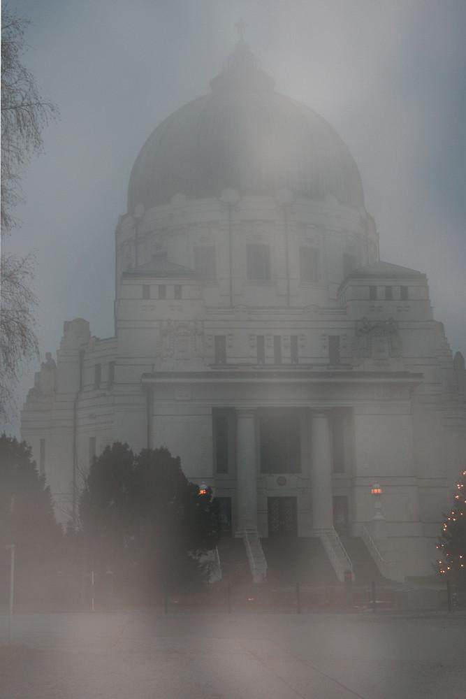 Nebel am Zentralfriedhof