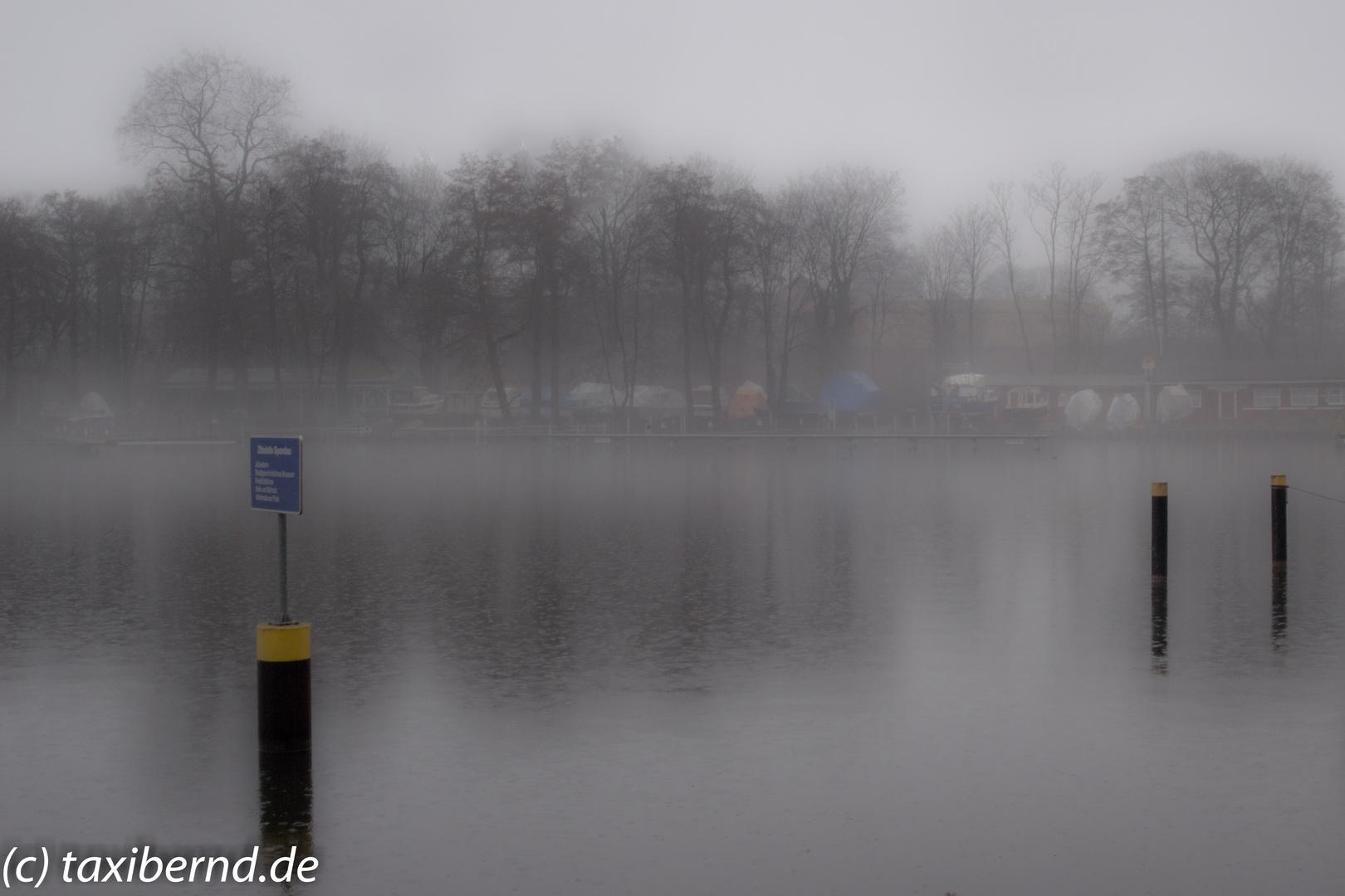Nebel an der Havel
