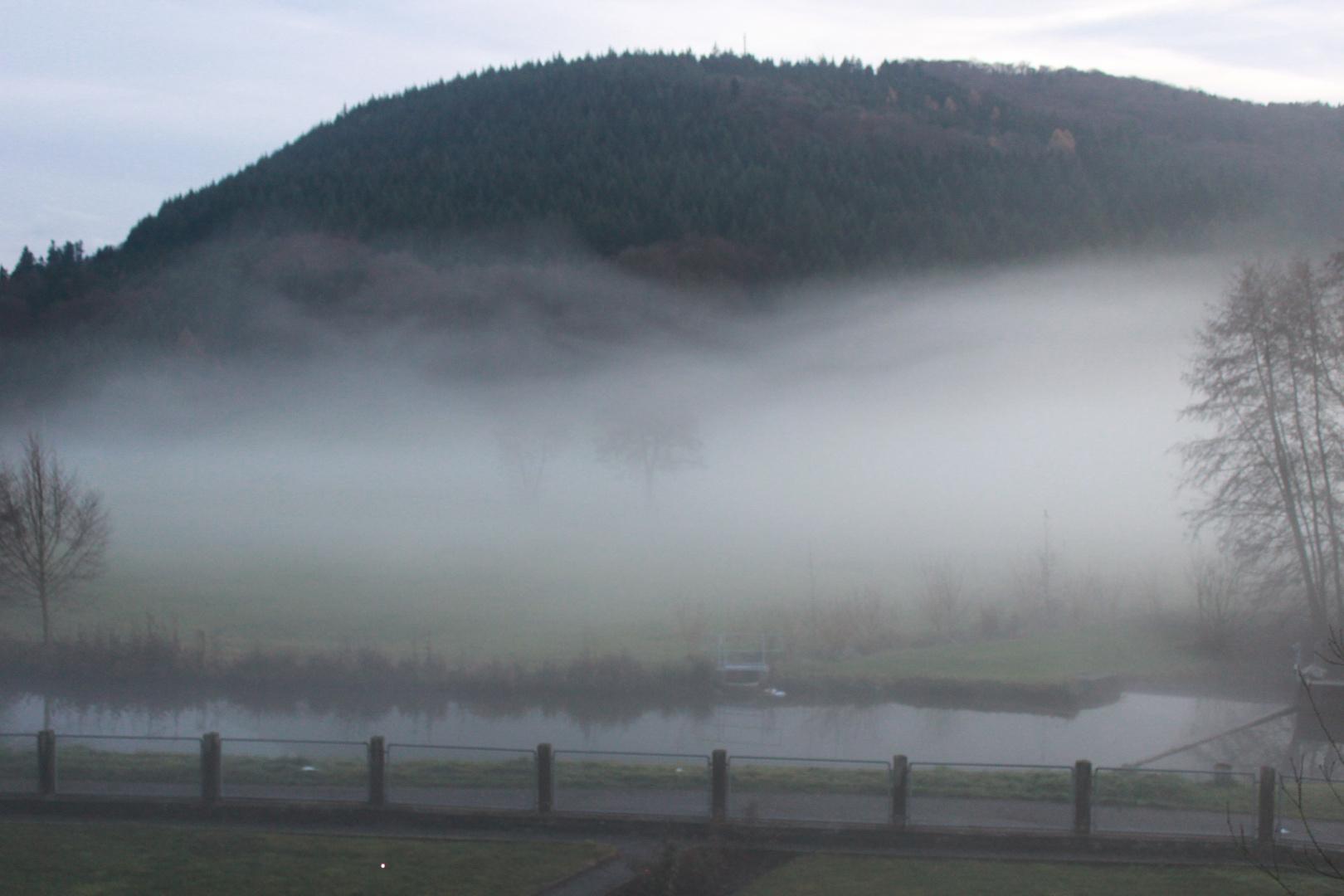 Nebel an der Schutter