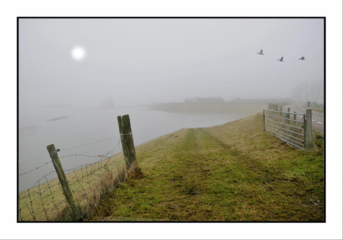 Nebel auf dem Deich