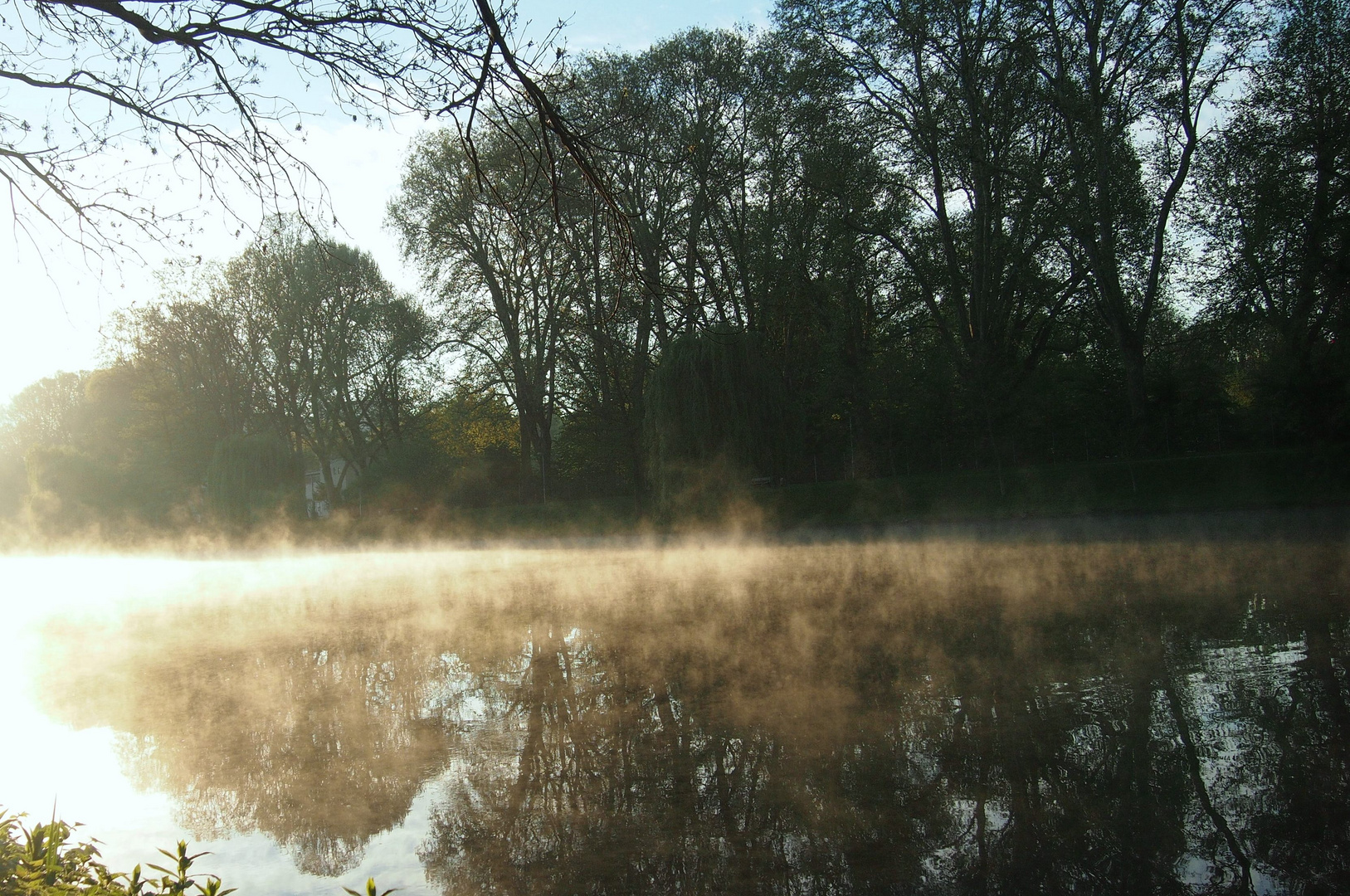 Nebel auf dem Neckar