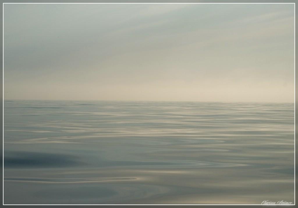 Nebel auf der Ostsee