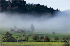 Nebel-Aufstieg