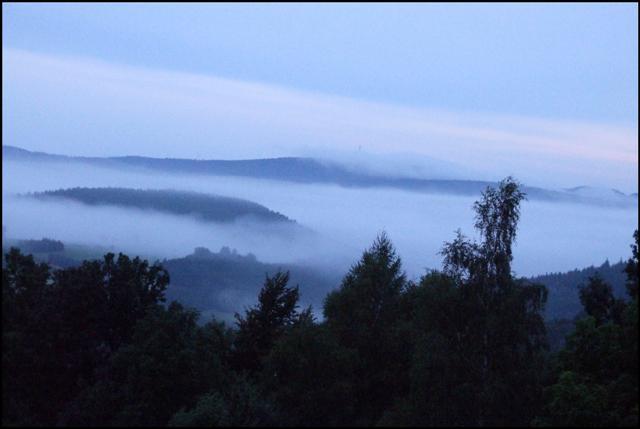 Nebel bei Rinseke
