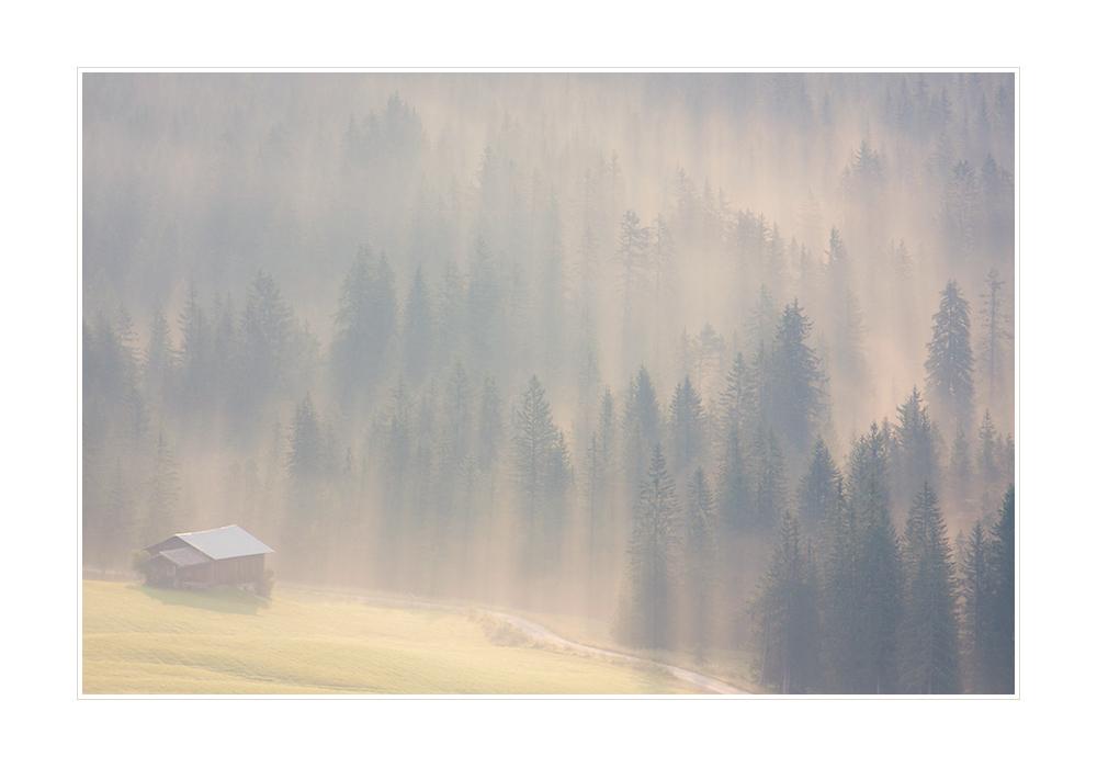 Nebel III