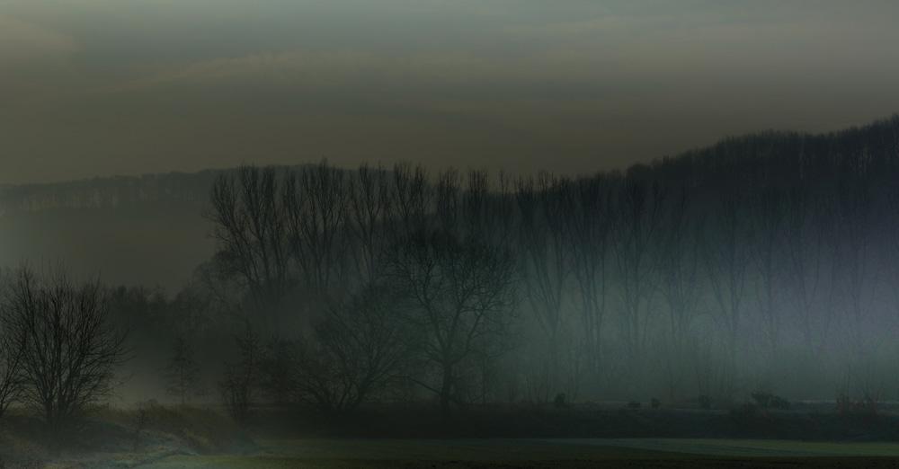 Nebel im April