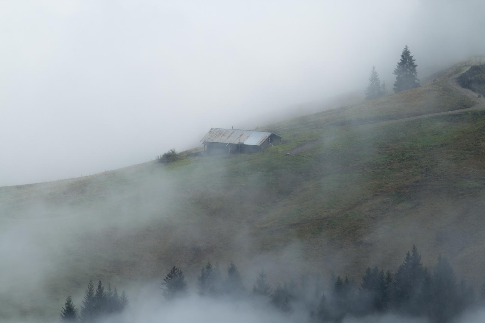 Nebel im Berg 2