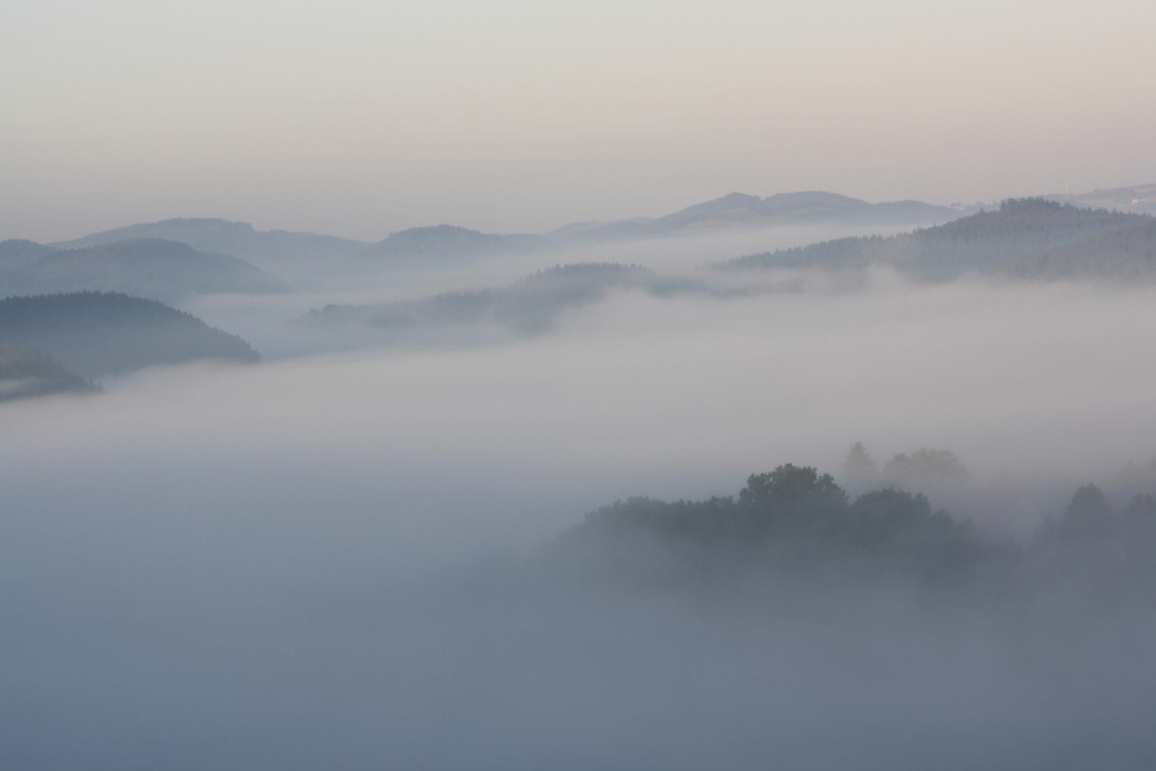 Nebel im Diemeltal - die Höpperbollen saufen ab.....