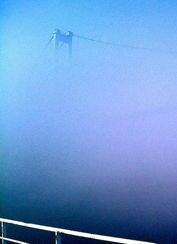 Nebel im Fjord