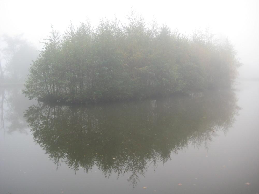 Nebel im Naturschutzgebiet Kirchwerder Wiesen