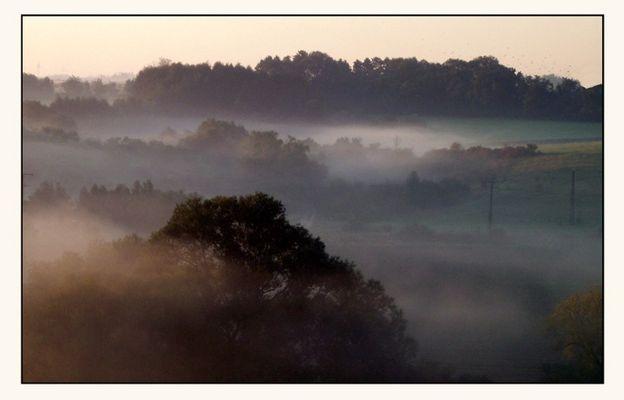 Nebel im Saaletal ohne die Saale