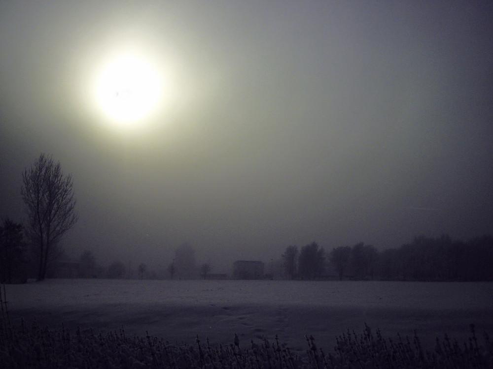 Nebel im Schnee