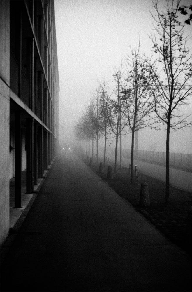Nebel im Steinhof