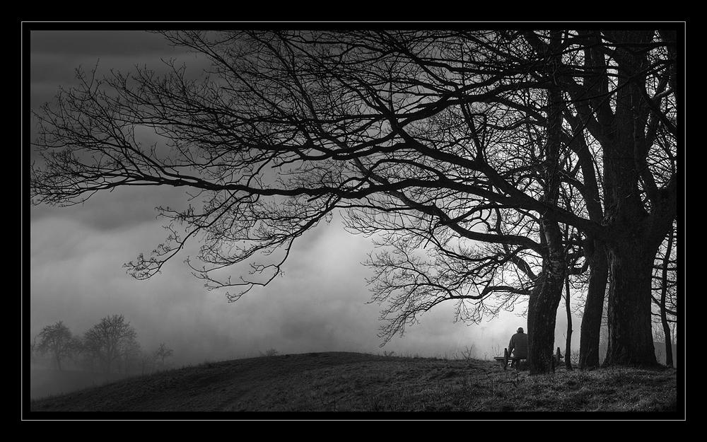 Nebel im Tal - Nebbia nella valle