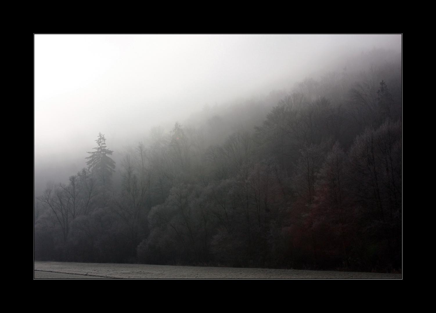 Nebel im Taubertal