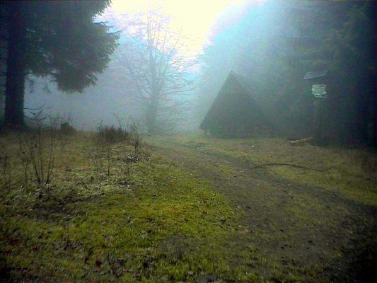 Nebel im Thüringer Wald