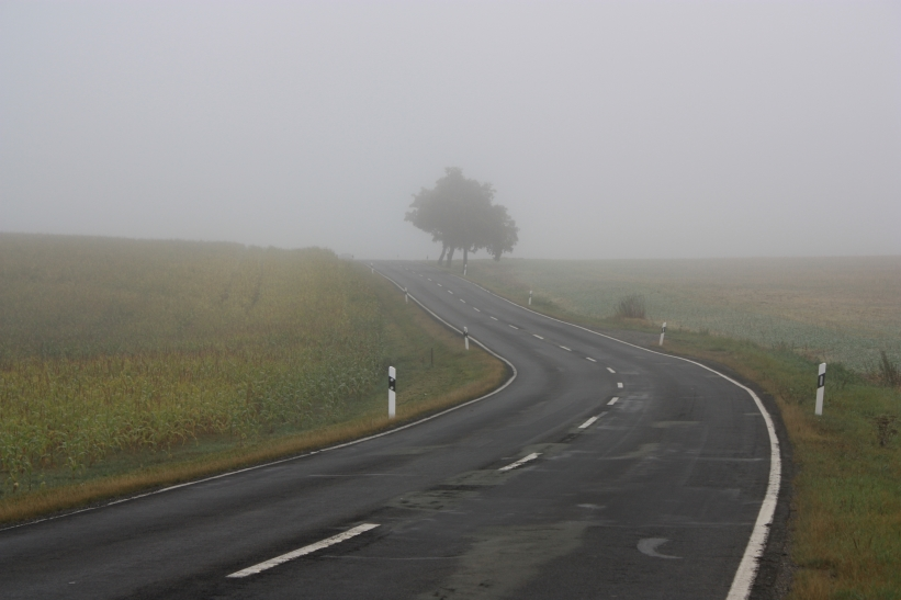 Nebel im Vogtland