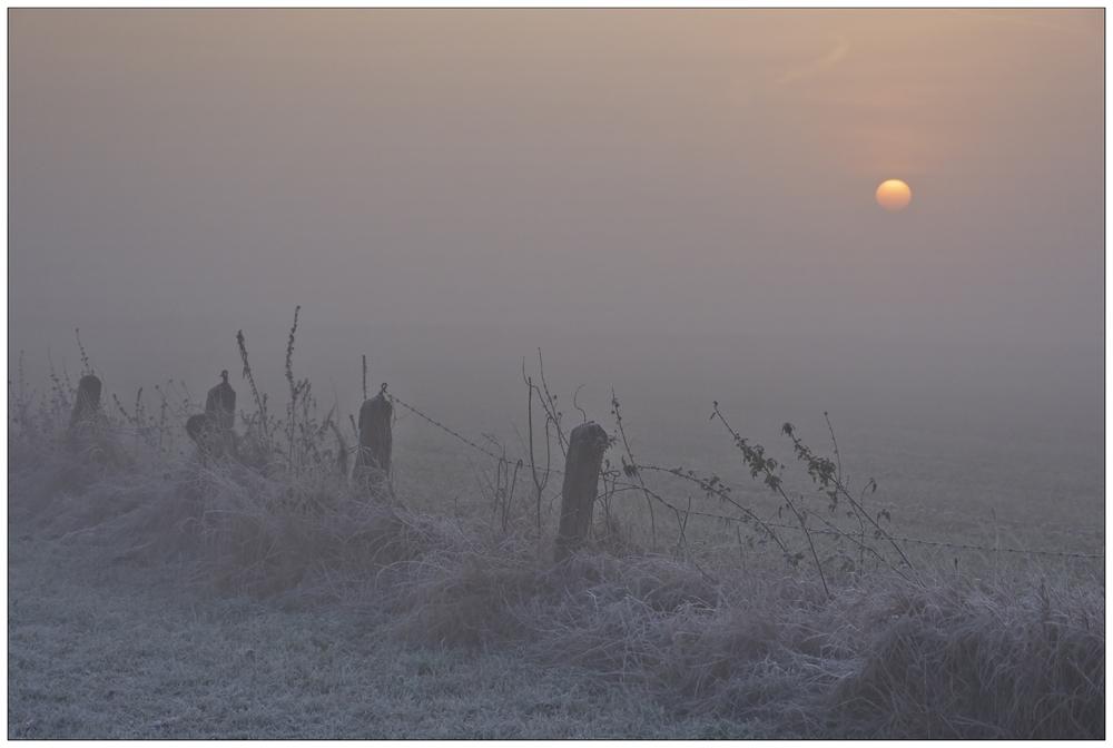 Nebel-Impression