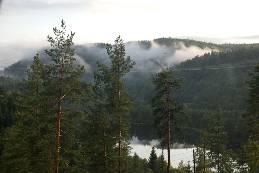 Nebel in Dalsroa