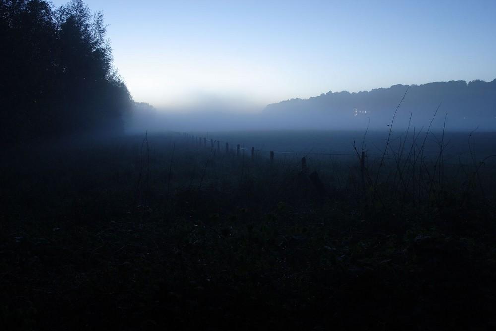 Nebel in den Ruhrauen