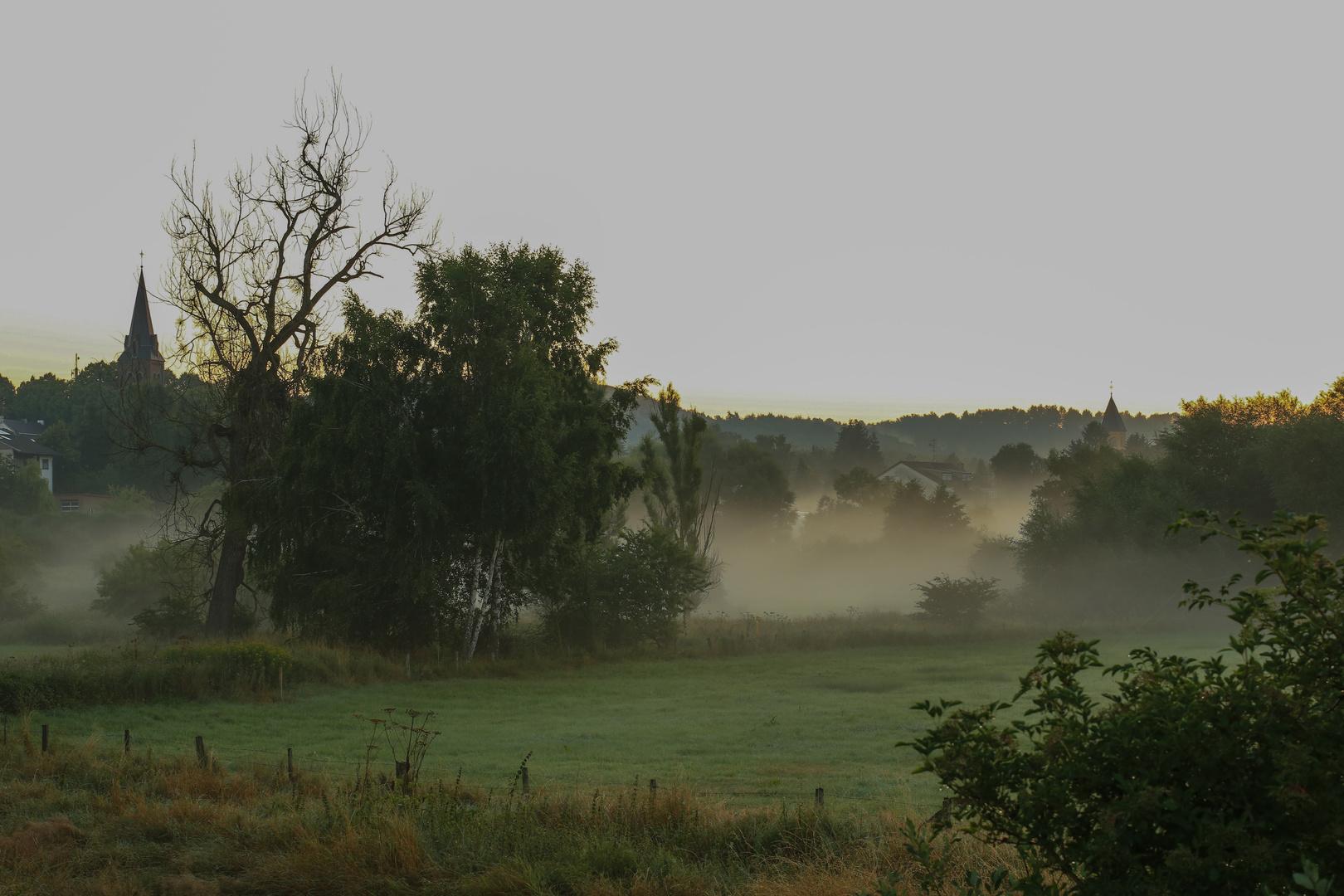 Nebel in der Eifel