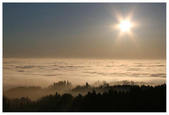 nebel in der schweiz