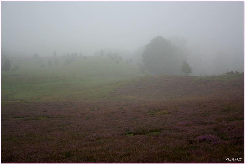 ~~~Nebel in Gussaröd~~~