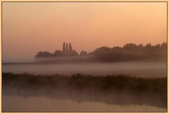 Nebel in Oktober