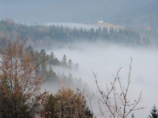 Nebel in polnische Beskiden